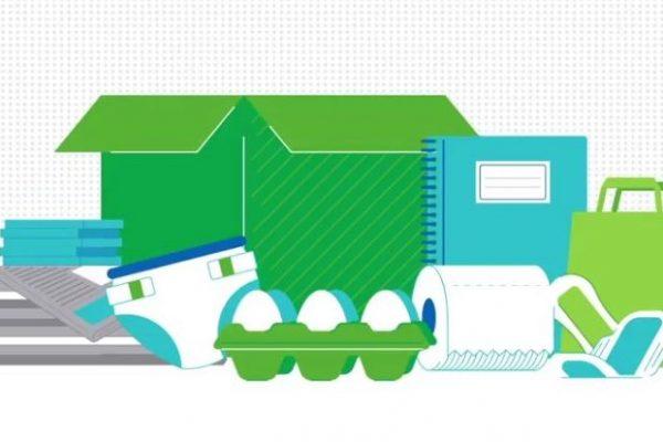 Die Nachhaltigkeit der Papierindustrie