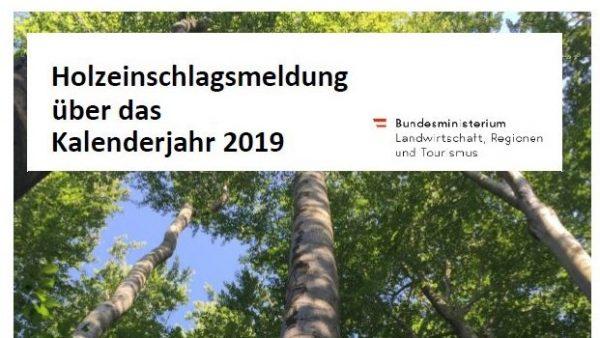 HEM 2019: heimischer Holzeinschlag betrug 18,9 Mio. Festmeter
