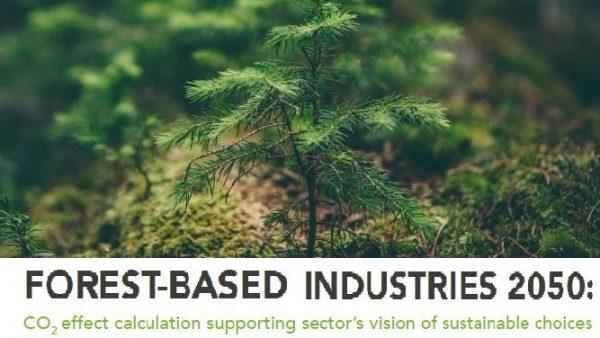 CIFOR 2020: Holzekette spart jährlich 800 Mio. Tonnen CO2.